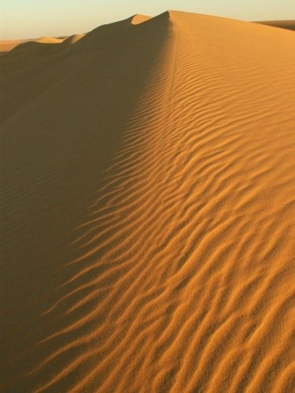 Sand dunes. Siwa oasis